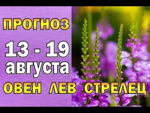 Таро прогноз (гороскоп) с 13 по 19 августа ОВЕН, ЛЕВ, СТРЕЛЕЦ