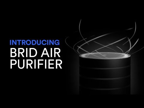 BRID: The Revolution of Air Purifying