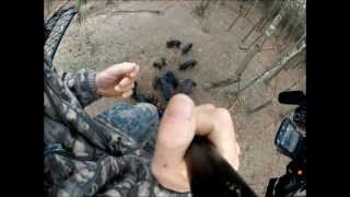 Hog Wild Adventures Spear Hunt With a GoPro