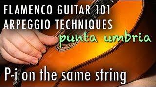 Flamenco Guitar 101 - 20 - Arpeggio P-i on the same string - Punta Umbria