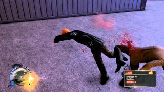 Sleepdogs Fight! PC - Gameplay Max setting HD 1080p 24fps
