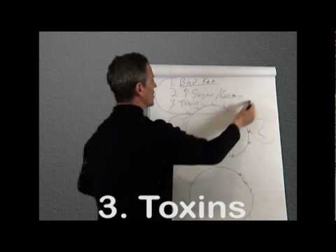 What is Leptin Resistance Part 1 and 2 On How To Lose Weight