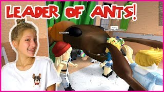 Becoming The Leader of ANTS!
