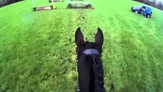 SGW Rekken B paarden 14-11-2015