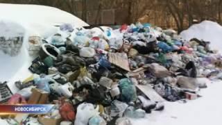 Новосибирцы жалуются на плохой вывоз мусора(, 2017-01-10T12:30:00.000Z)