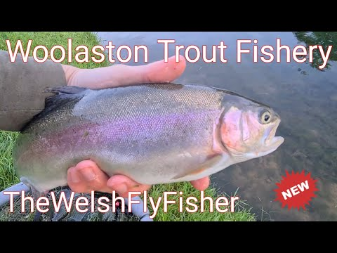 Fly Fishing At Woolaston Trout Fishery