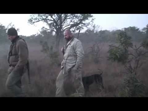 Niassa Hunting Mozambique Intro.mov
