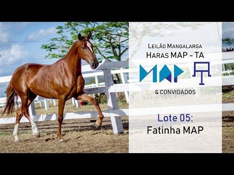 Fatinha MAP