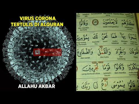 Masya Allah!  Mungkin Ini Penyebab Asal Muasal Virus Corona