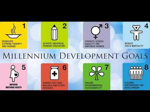 Millennium Development Goals(CSS Regarding)