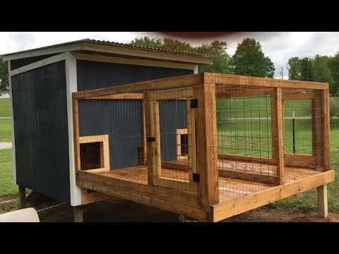 Raised Dog Kennels Attached To Whelping House: Build With Pics