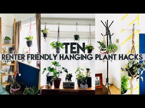 10 HANGING PLANT DIY HACKS FOR RENTERS | No Drill, No Holes | Miss Bird