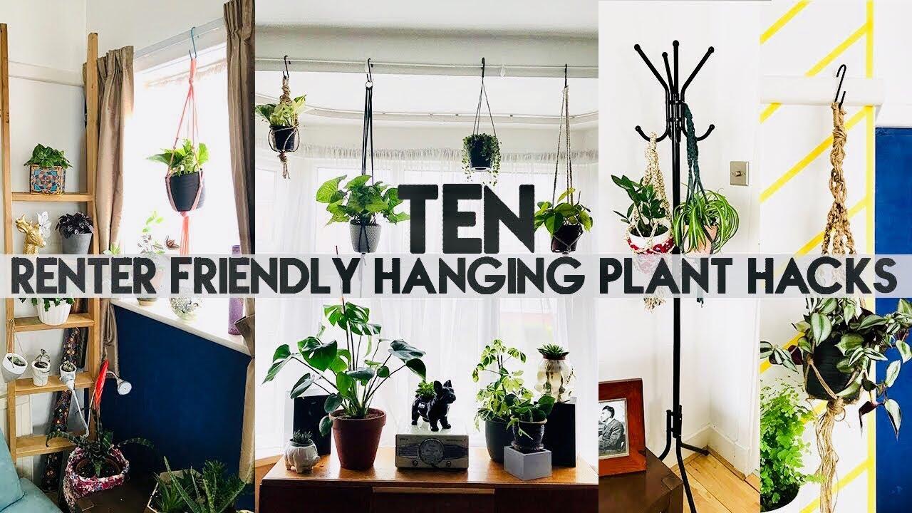 10 Hanging Plant Diy Hacks For Ers