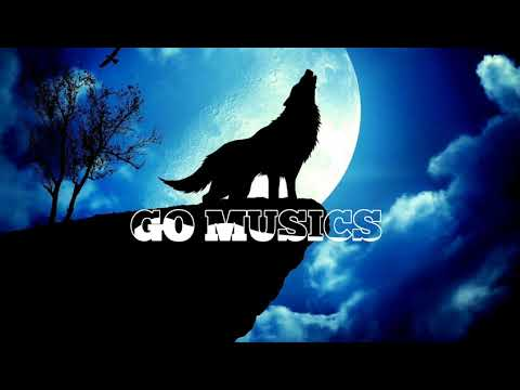 Wolf and the moon | No copyright music | go musics