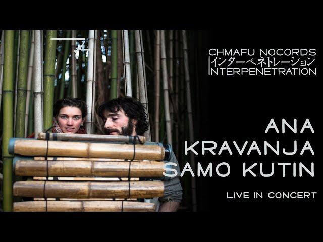 Ana Kravanja & Samo Kutin @ Interpenetration 1.8.4 (excerpt)