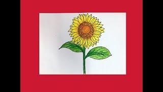 Hướng dẫn cách dạy bé học tập vẽ bông hoa hướng dương | Dạy bé học