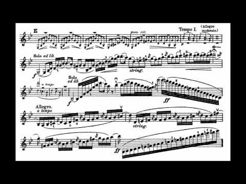 Bruch, Max mvt1+2(begin) 1st violin concerto
