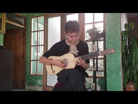 Canarios de Gaspar Sanz para Guitarra Barroca por Damián Guardia