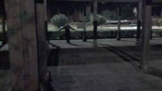 Video Il Volo Del Passero Temerario - Villa Comunale download MP3, 3GP, MP4, WEBM, AVI, FLV Januari 2018