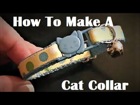 how-to-make-a-cat-collar