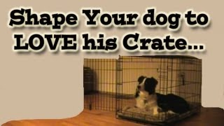 Shaping Your Dog To Love His Crate - Clicker Training Tutorial