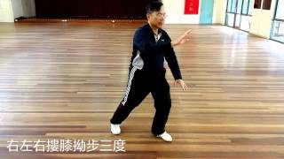 This is my Master Lun of CAV (Chinese Association Victoria) TaiChi ...