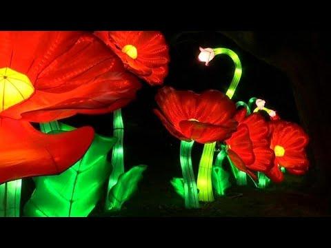 شاهد: أول مهرجان شتوي للفوانيس يضيء مدينة نيويورك  - نشر قبل 39 دقيقة