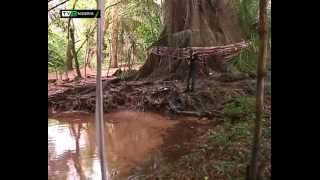 THE MYSTERY LAKE IN NIGERIA - RIVER ETHIOPE | TVC NIGERIA