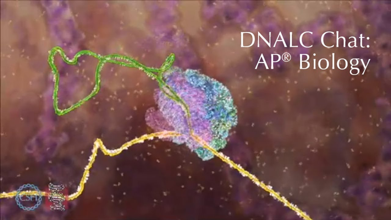 Dnalc Ap Bio Chat X Youtube