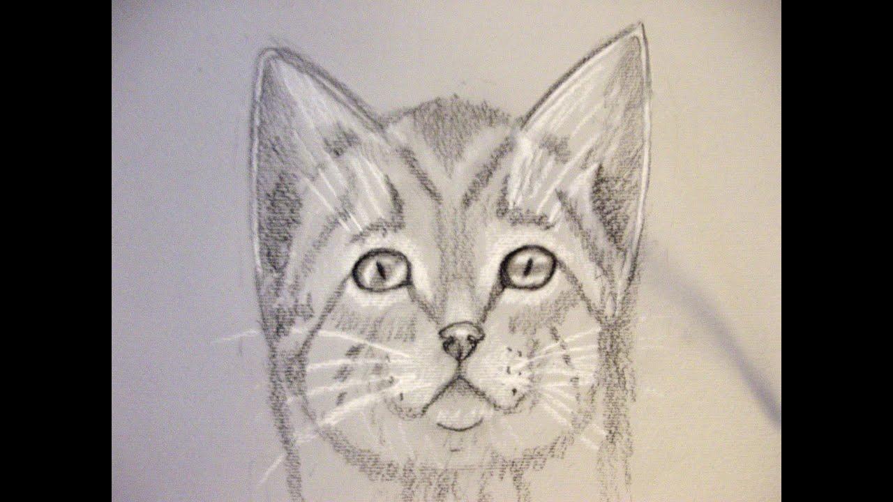 abbastanza Come disegnare un gatto. Corso di disegno per bambini. how to draw  LL82