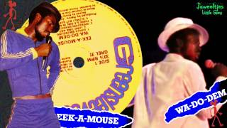Eek A Mouse - There