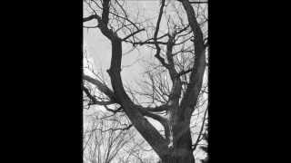 STURMPERCHT Die tausendjährige Eiche / Oak Folk