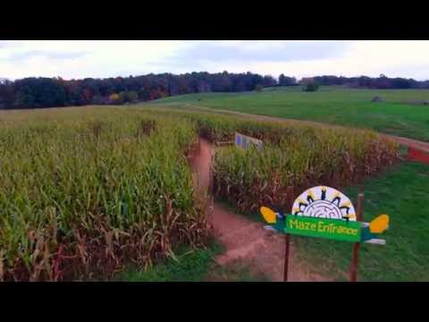 The Corn Maze in the Plains, Virginia