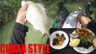 Catch And Cook: Not A Small Snapper