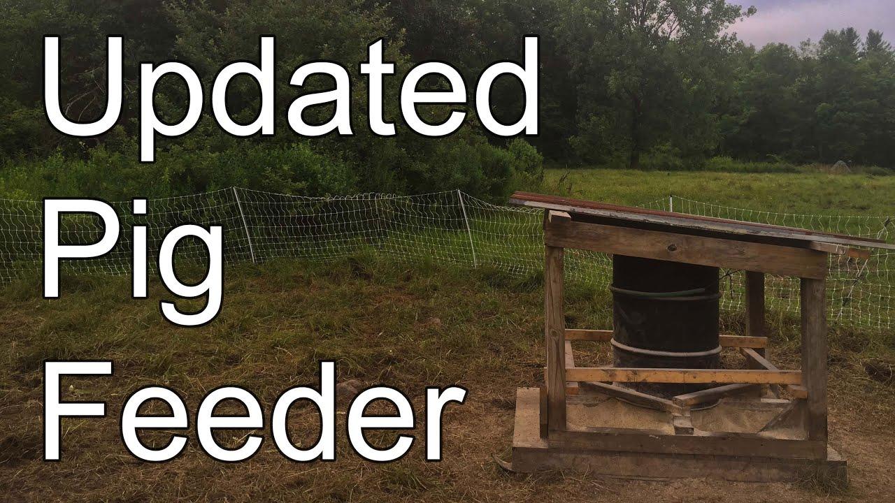 concrete the raising feeder pig pigs pasture barbie real or farm