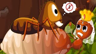 Baby Panda Ant Colonies - Play Fun Baby Panda Games Explore and Learn About Ants Life In Nature