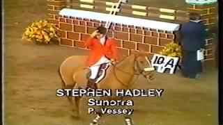 Sunorra - FEI Volvo World Cup Holland Qualifier Birmingham Stephen Hadley 1980's