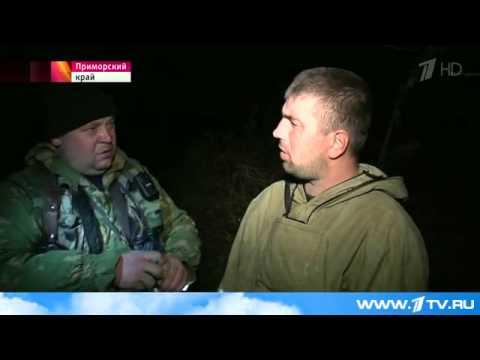 видео: В Приморье проводят ночные рейды против браконьеров
