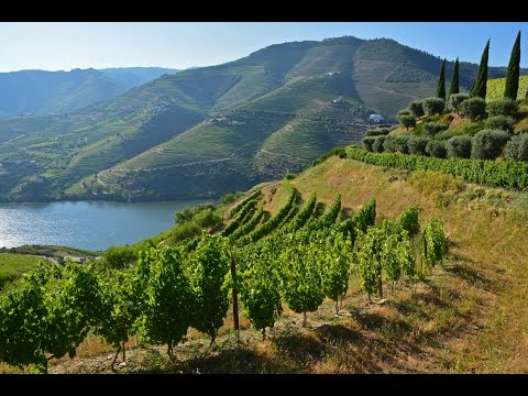 Portugal's River of Gold - Cruising the Douro River with Viking River Cruises