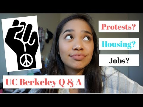 UC BERKELEY Q&A: My thoughts on campus PROTESTS, finding apartments, getting a job, etc!