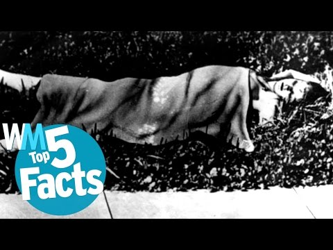 Top 5 Black Dahlia Murder Facts