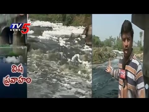 Musi River Pollution | TV5 Ground Report On Musi River | Telugu News | TV5 News