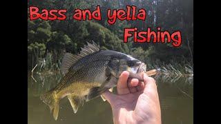 australian bass and yellow belly fishing