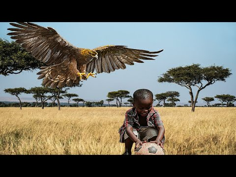 The hungry eagle has no mercy (the most dangerous eagles attacks