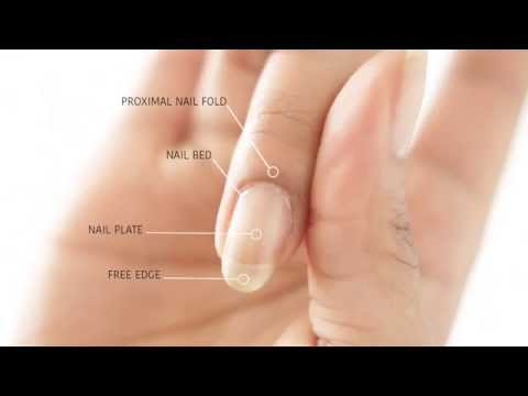 HOW TO REMOVE CUTICLES WITHOUT BLEEDING! | abetweene