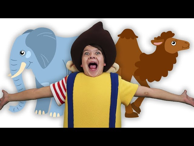 КУКУТИКИ - ЖИВОТНЫЕ - Где живут КУКУТИКИ - Развивающая детская песня мультфильм