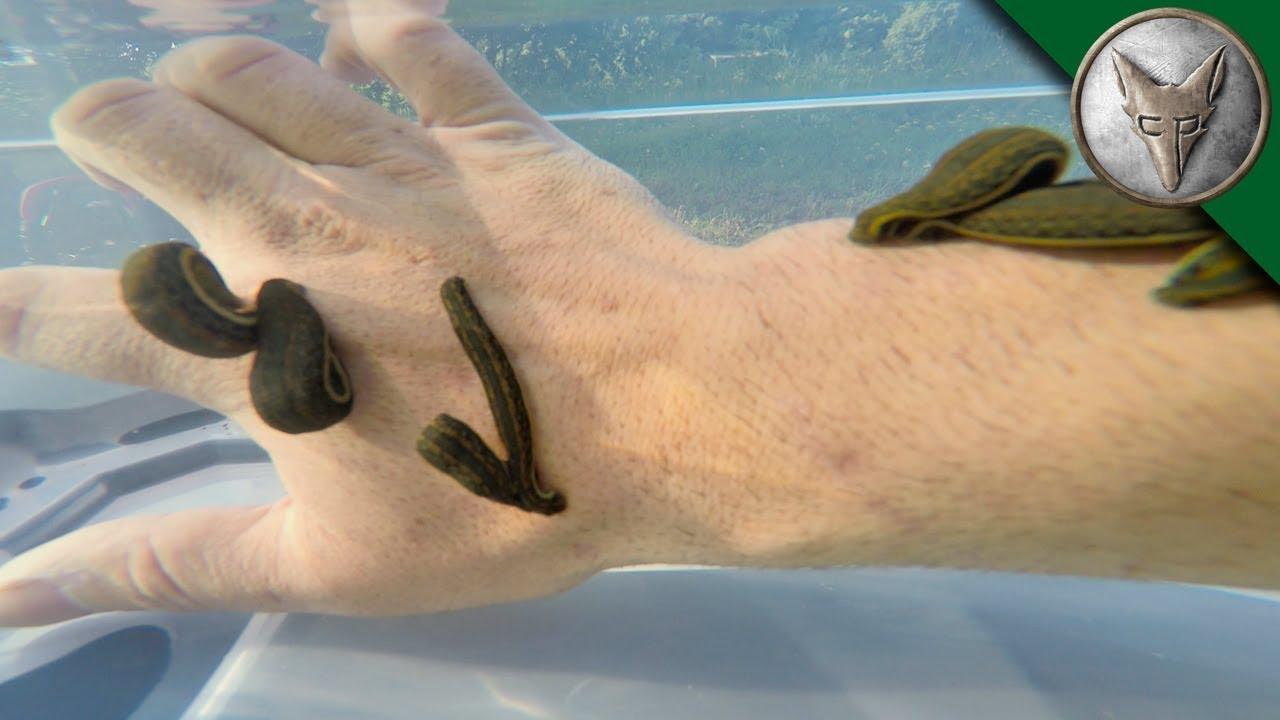 footprint charms for bracelets wholesale