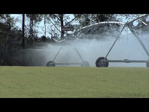 Water Issues With Florida Still Concern Georgia Agriculture Community