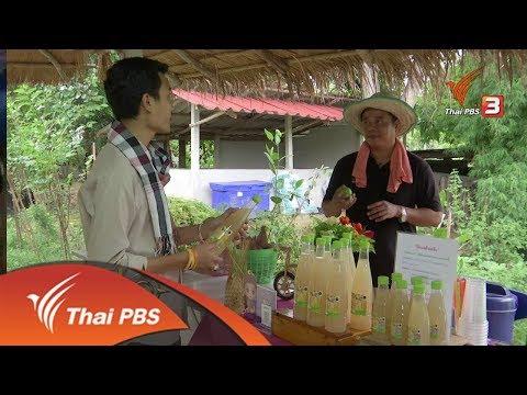 อาชีพทั่วไทย : หนุ่มร้อยเอ็ดทำเกษตรผสมผสานรายได้ดี ( 16 ส.ค. 61)