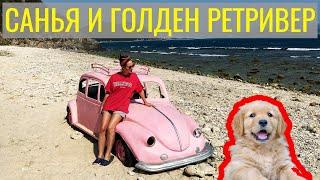 САНЬЯ ГОЛДЕН РЕТРИВЕР ХАЙНАНЬ Sanya GOLDEN RETRIEVER HAINAN